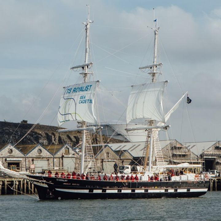 TS Royalist Like Sailors