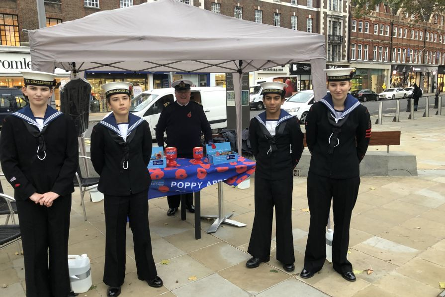 poppy appeal collecting