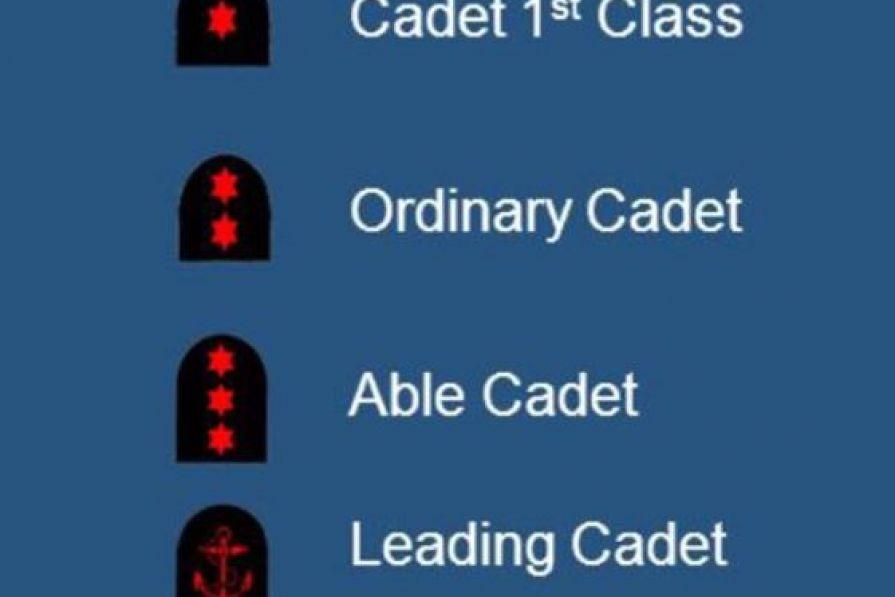 Badges of rank